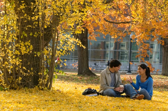 Students sitting and talking under a tree on a fall day.